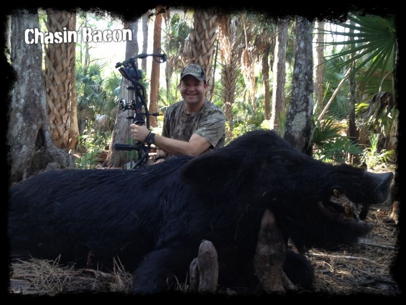 South florida wild boar hunting hog hunting trophy pig for Alabama lifetime hunting and fishing license