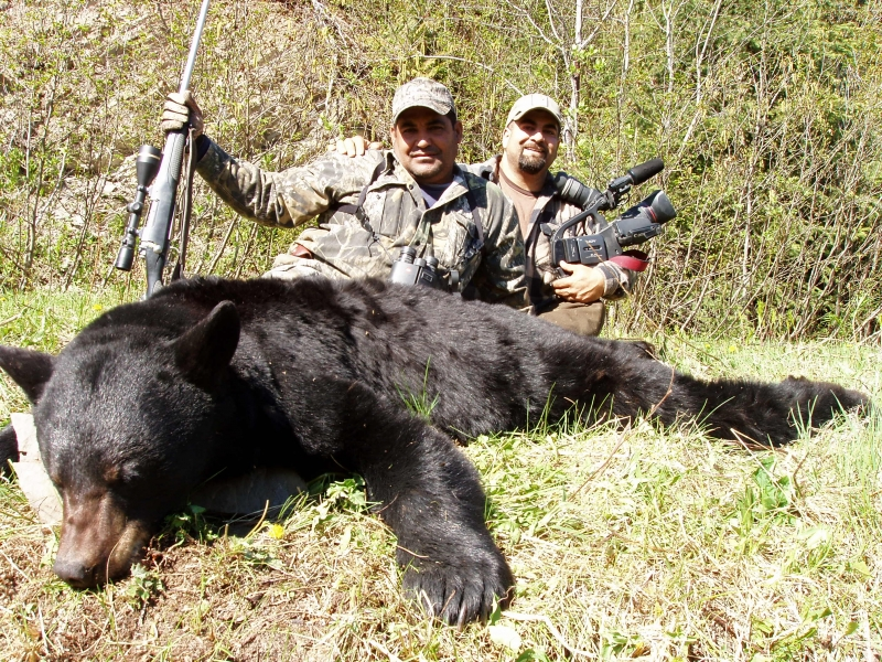 Alaska bear hunting brown grizzly trophy bear hunting for Lifetime hunting and fishing license tn